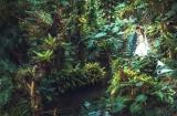 《南投婚攝》美好時刻的怦然心動/台一生態休閒農場